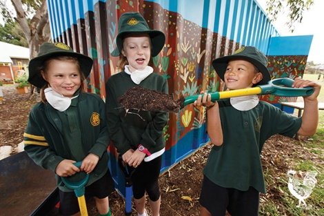 • Coolbinia primary year 1 students Matilda, Chloe and Christopher help move some super-poo! Photo by Matthew Dwyer
