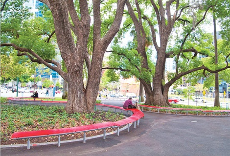 • One of Perth's rare shady and green spots.