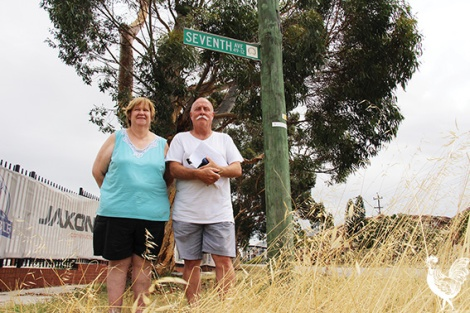 • Dina Rechichi from Mandy's Deli and Graeme Reany say these two iconic gums at the entrance to Maylands will go under plans to widen Guildford Road. Photos by Steve Grant
